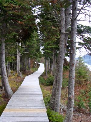 Rigolet-Labrador-Boardwalk